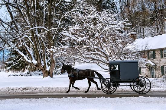 amish-snowy-trip2