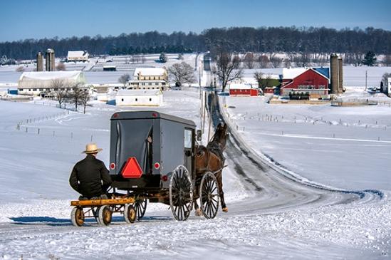 amish-winter-buggy-scene
