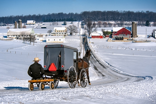 amish-winter-buggy-scene