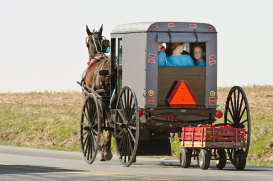 amish-flower-wagon