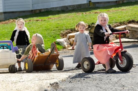 amish-wagon-mishap