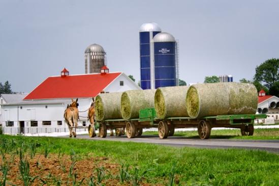 amish-round-hay-caravan
