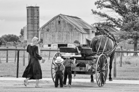 amish-store-visit2a