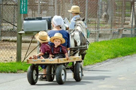 amish-wagon-mail-run