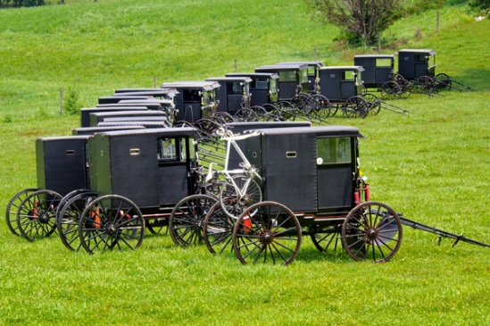buggies-at-wedding