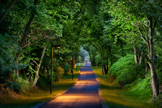 rail-trail-evening-light
