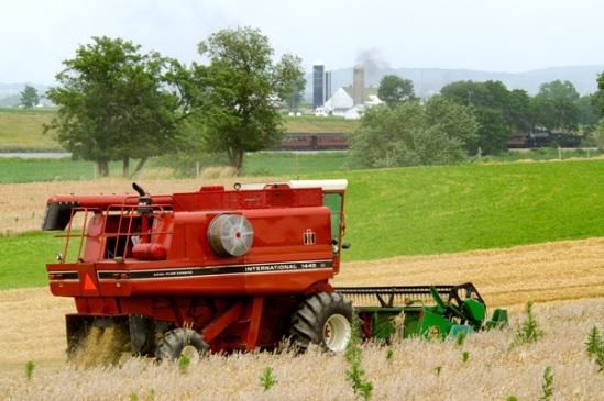 strasburg-harvesting