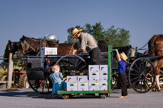 amish-little-helpers