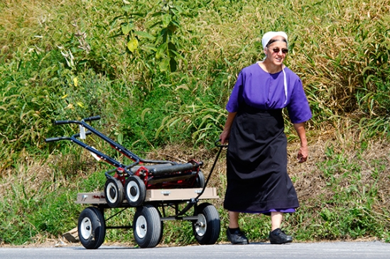 amish-mower-hauler