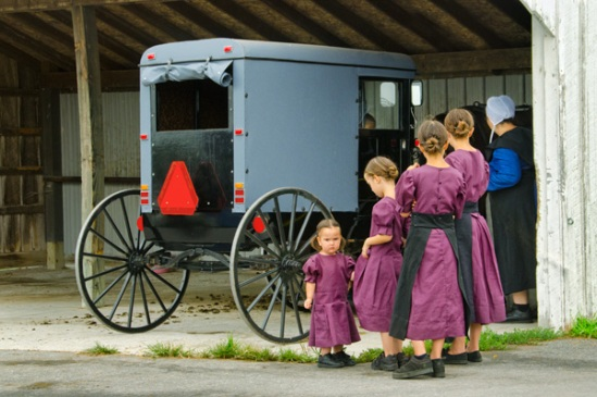 amish-sisterhood