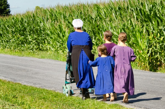 amish-skirt-tugger