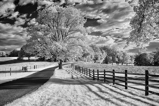 chester-county-infrared