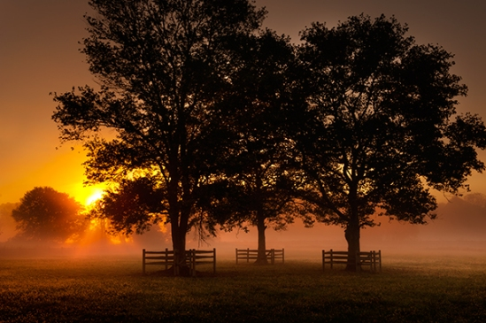 chester-county-fog