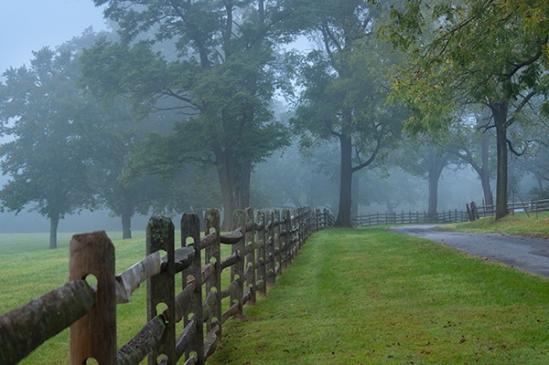 chester-county-fog5