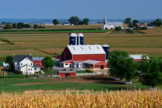 strasburg-farm-vista