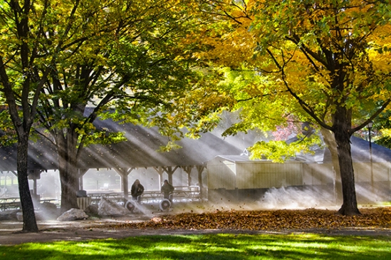 lititz-park-sunrays
