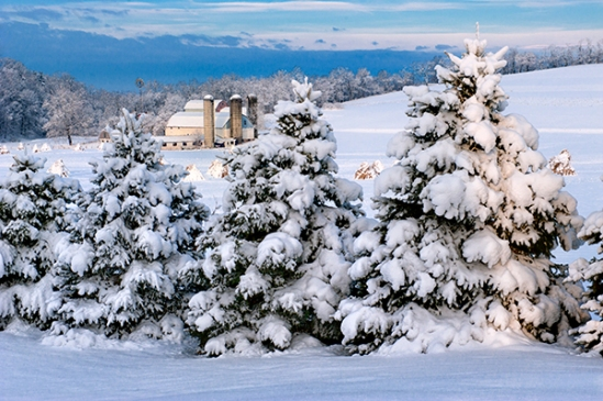 akron-rd-snowscene-farm