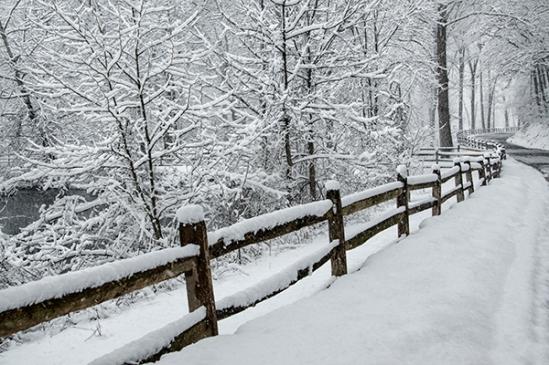 warwick-road-snow