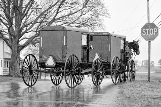 amish-buggy-tow