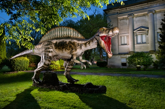 reading-dinosaur-show2