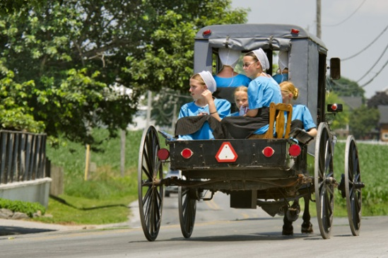 amish-buggy-chair