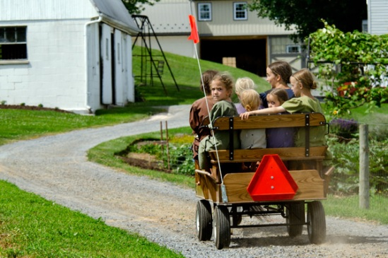 amish-cart-full