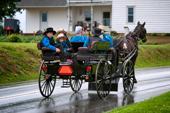 amish-family-after-rain