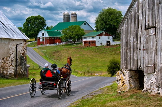 amish-on-seldomridge