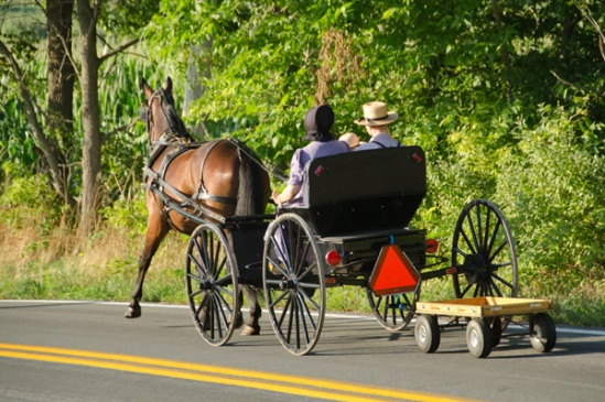 amish-pulling-red-wagon