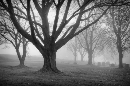 bergstrasse-cemetery