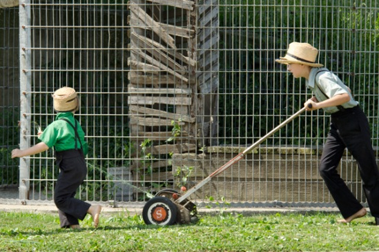 amish-mowing-pair