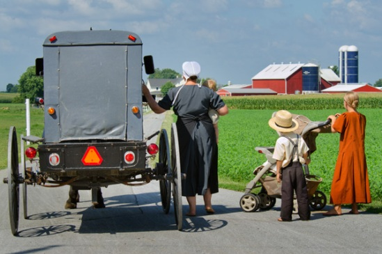 amish-waiting-group
