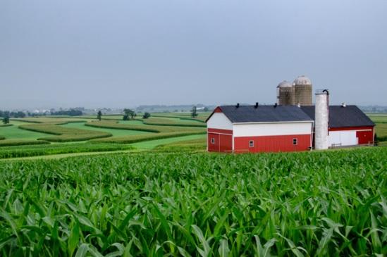 lancaster-corn-fields