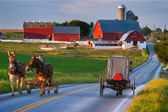amish-on-noble-road