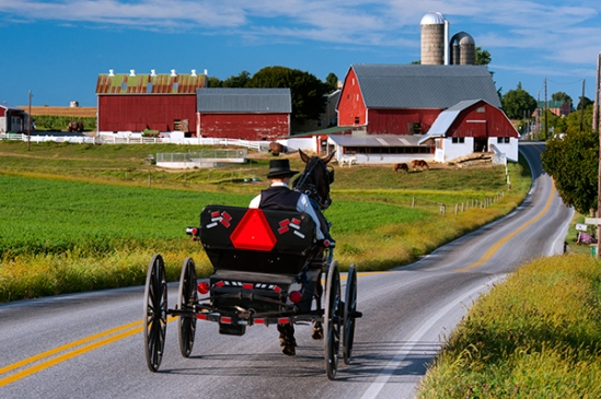 amish-on-noble-road2