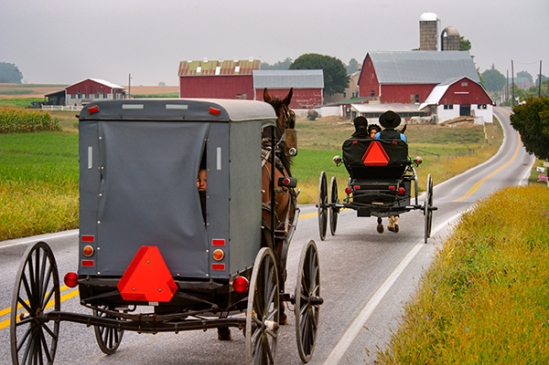 amish-on-noble-road3