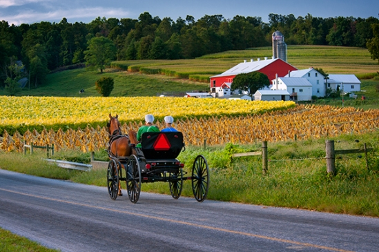 amish-on-quaker-road