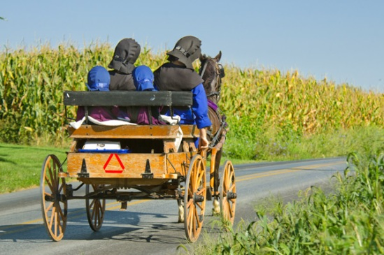 amish-special-bonnets