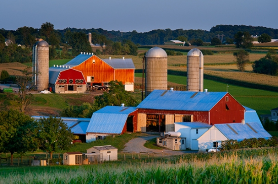 amish-vintage-rd-farms