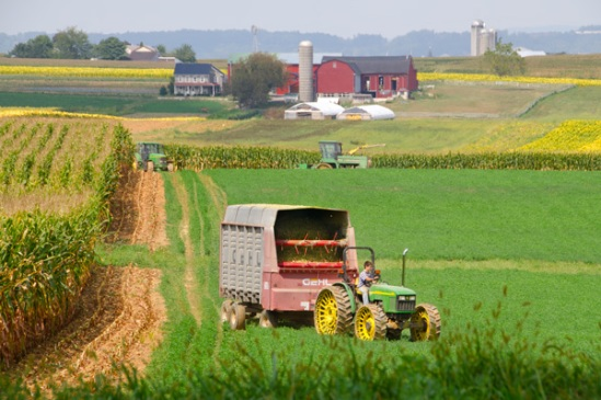new-holland-harvesting2