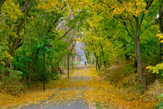 akron-rail-trail-fall