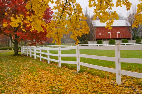 denver-farm-fall-fence