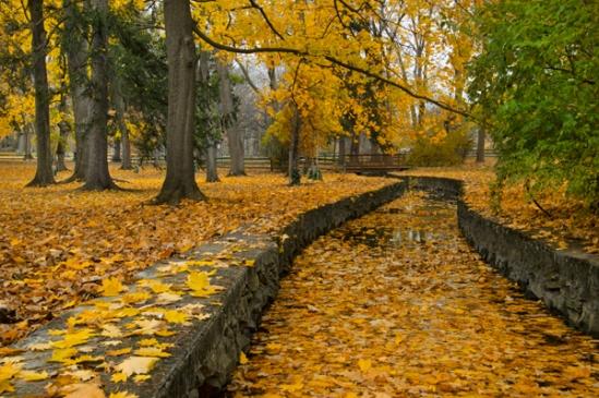 longs-park-foliage2