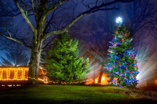 adamstown-christmas-tree