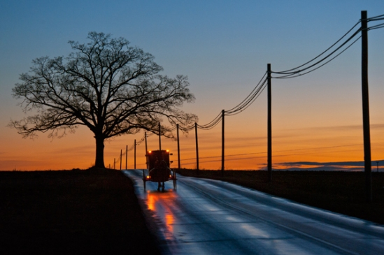buggy-lights-on-peace-road