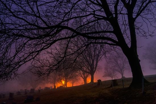 bergstrasse-cemetery-fog-lights