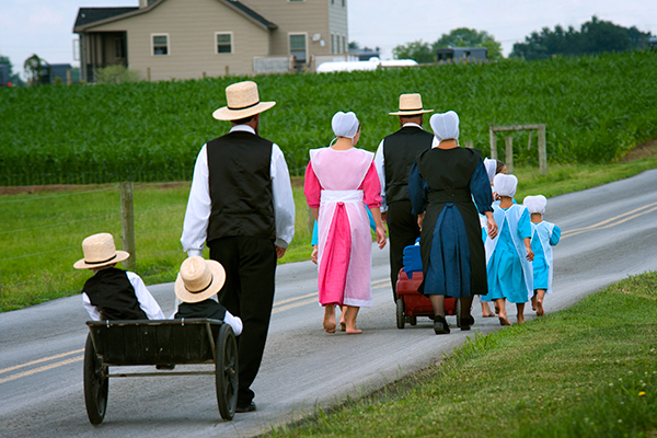 https://reesephoto.files.wordpress.com/2017/06/amish-beautiful-colors.jpg
